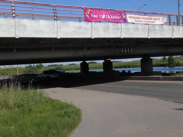 «Мостом глупости» занялся Албин. Юбиляр не доживет до 151 :( Мост, Юбилей, Санкт-Петербург, Глупость, Мост глупости