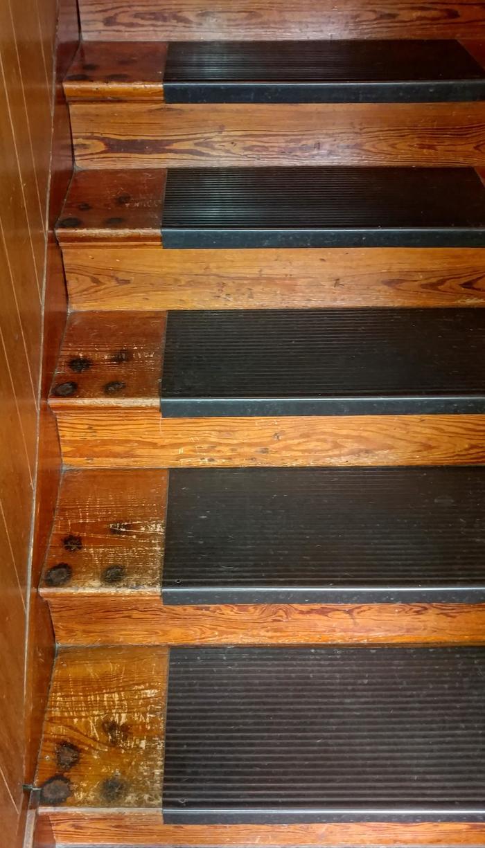 Следы на лестнице сделанные моей таксой за много лет