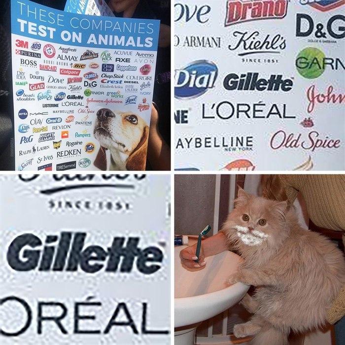 Компании которые тестируют свою продукцию на животных