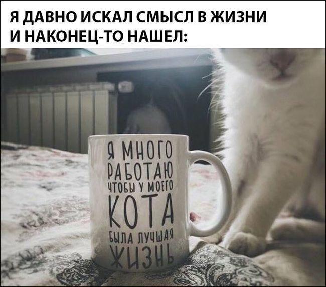Так вот,оказывается,зачем это всё!)))
