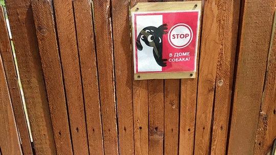 Осторожно! Злая собака! Гифка, Предупреждение, Забор, Собака, Деревянные скульптуры, Новосибирск