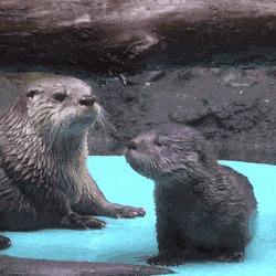 Мам, я не хочу учиться плавать