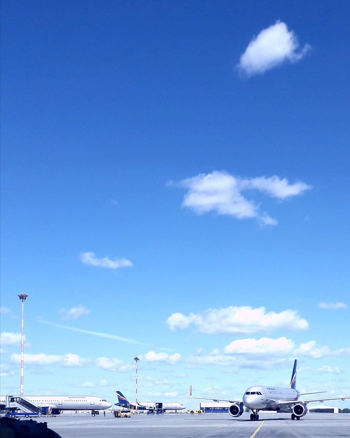 A-320, airport SVO Airbus A320, Plane, Airbus, Самолет, Моё, Длиннопост