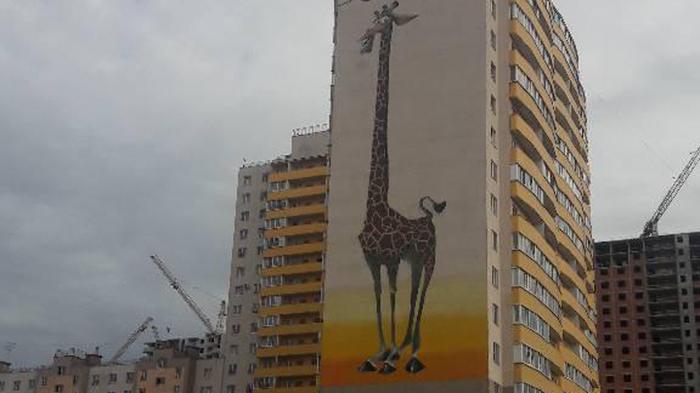 Петербуржец требует закрасить жирафа на стене дома на Вишерской улице Текст, Граффити, Новости
