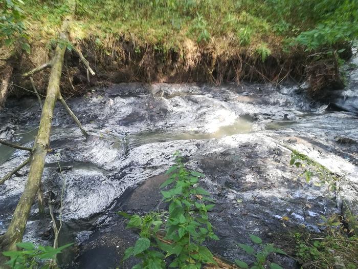 Слив отходов в реку Дубна Вербилки, Дубна, Отходы, Загрязнение, Жалоба, Длиннопост, Река Дубна, Негатив