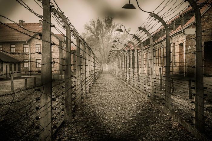 Лагерная психология: переработка человека на фабриках смерти Психология, Тюрьма, Освенцим, Длиннопост, Негатив