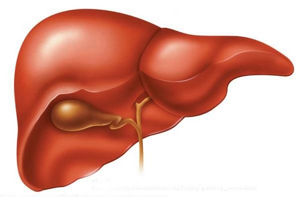 Аутоиммунный гепатит Гепатит, Болезнь, Текст