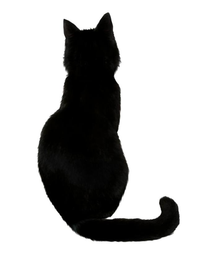 Сказка о добродетельной кошке Сказка, Текст, Япония, Длиннопост