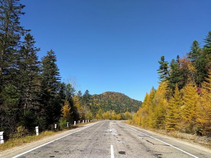 Лучше гор могут быть только осенние сопки Сопки, Дальнегорск, Кавалерово, Приморский край, Длиннопост