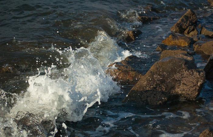 Море волнуется... Море, Чайки, Владивосток, Nikon, Nikon D40, Nikkor, Длиннопост