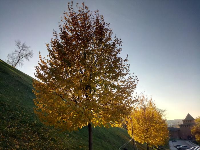 Немного осеннего Нижнего вам Осень, Нижний Новгород, Природа, Кремль, Без рейтинга, Длиннопост