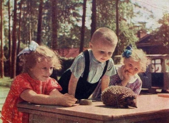 Дети и ёжик, СССР, 1962 год.