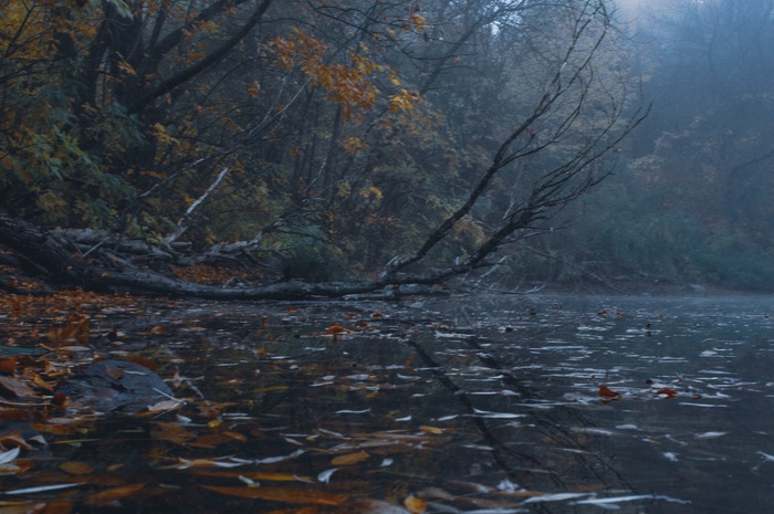 Заводь Начинающий фотограф, Хочу критики, Заводь, Река, Рассвет, Туман