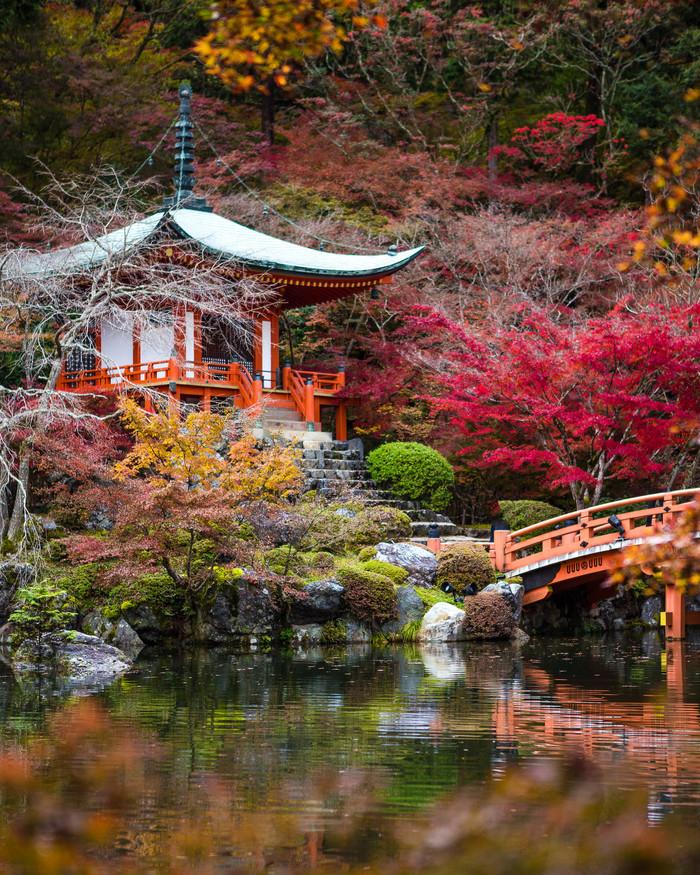 Япония.Храм Дайго-дзи (Daigo-ji Temple) Япония, Киото, Храм, Путешествия, Canon