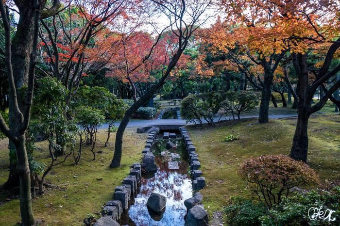Факты о Японии 6 Япония, Факты, Познавательно, Вуз, Поступление в вуз, Длиннопост