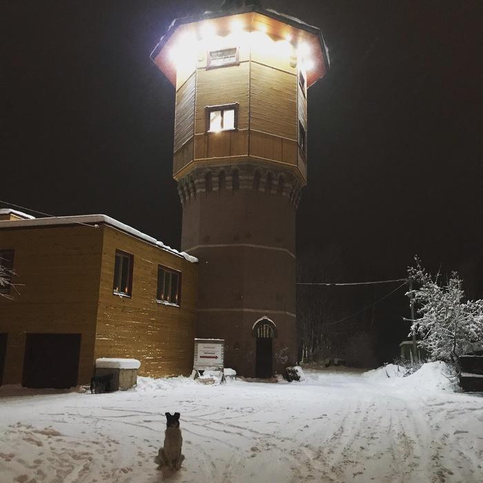 Томская башня жива Томск, Башня, Городские сумасшедшие, Длиннопост, Человек и башня