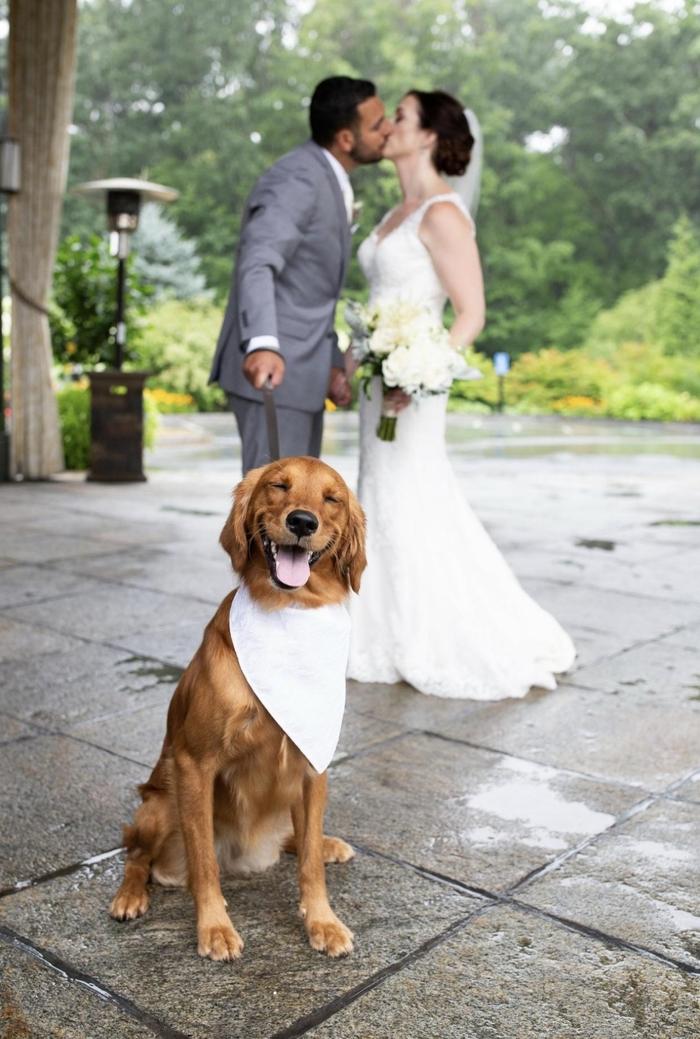Правильное свадебное фото