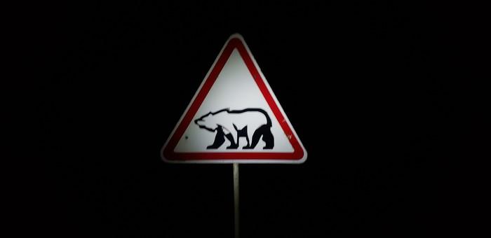 Дорожный знак на архепилаге Шпицберген Знак, Будьте осторожны, Медведь