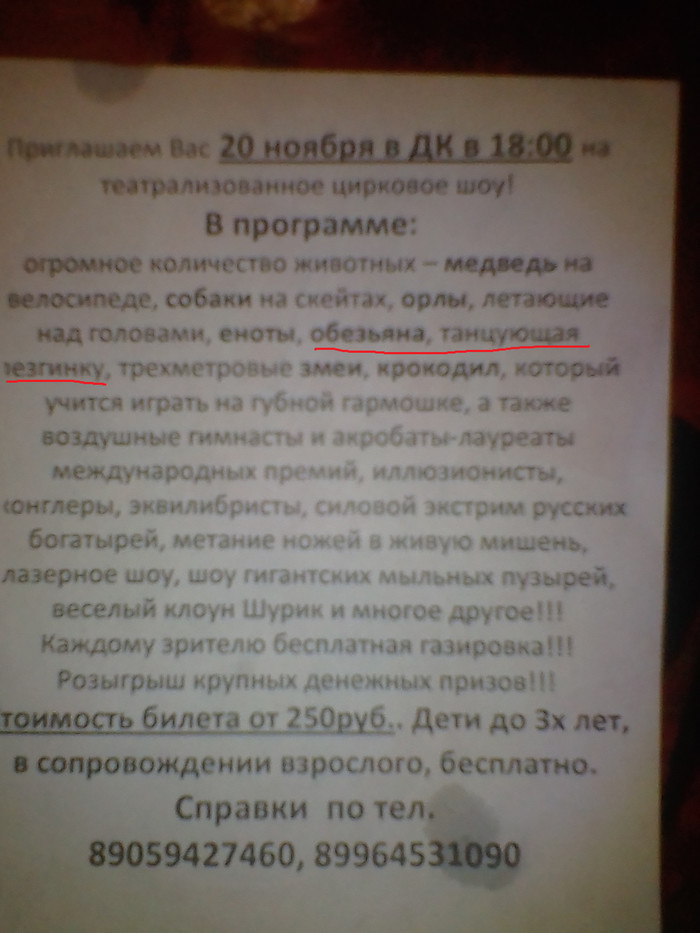 Как одним цирковым представлением тонко оскорбить целые народы Кавказ, Лезгинка, Цирк, Животные