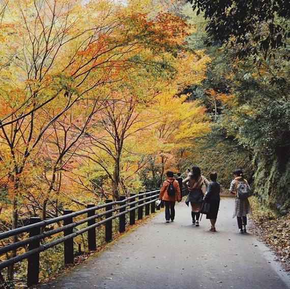 Киото. Япония Киото, Япония, Фотография, Длиннопост