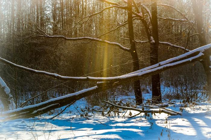 Почти зима Дзержинск, Фотография, Huawei mate 9, Canon 1300d, Природа, Лайтрум