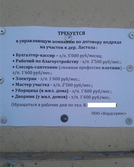 Поработал, купил пол батона и запил боярышником.... Архангельская область, Зарплата