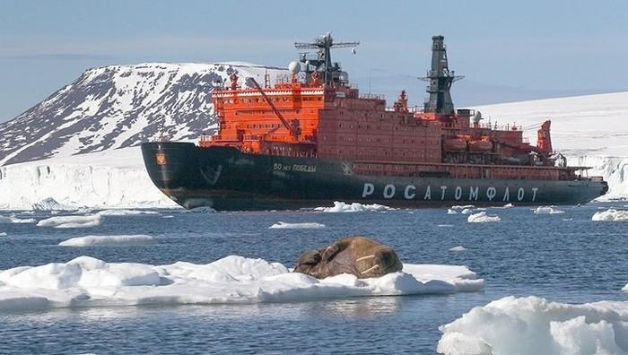 Ходить по Северному морскому пути можно будет только с разрешения России Общество, Россия, Экономика, Северный морской путь, Министерство Обороны РФ, Вести, РБК, Бизнес, Длиннопост