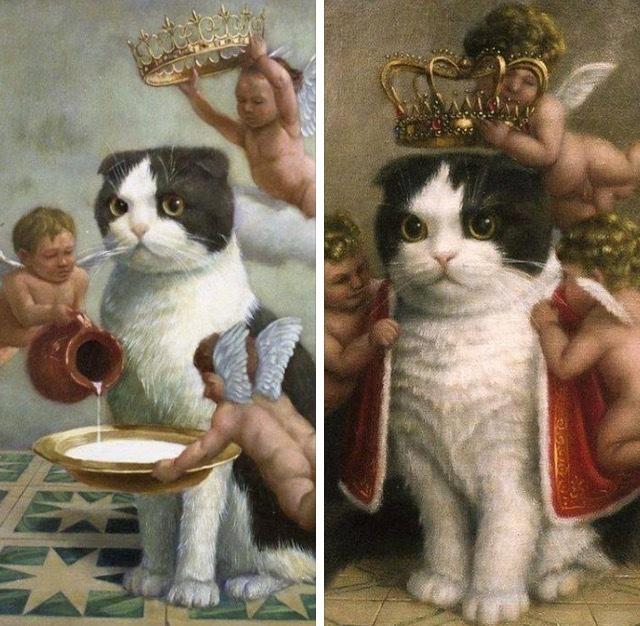 Когда случайно наступил на кота и пытаешься загладить свою вину.