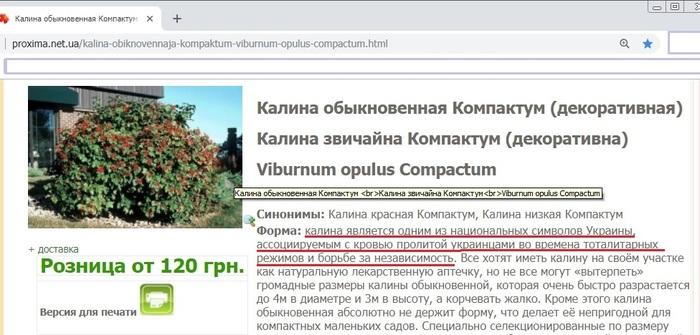 Немного о политике в кустах Украина, Сад, Недоумение