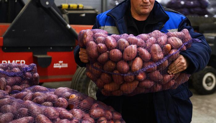 Более 60 сотрудников комбината в Приморье отказались работать из–за долгов по зарплате Работа, Зарплата, Долг, Приморский край, Новости