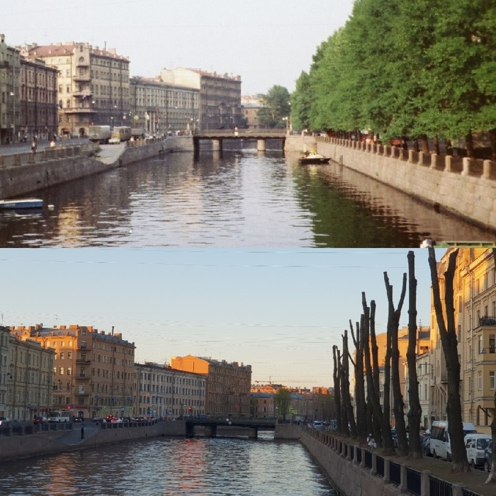 Как Петербург превращался в каменные джунгли Санкт-Петербург, Дерево, Вырубка, Озеленение, Урбанистика, Длиннопост