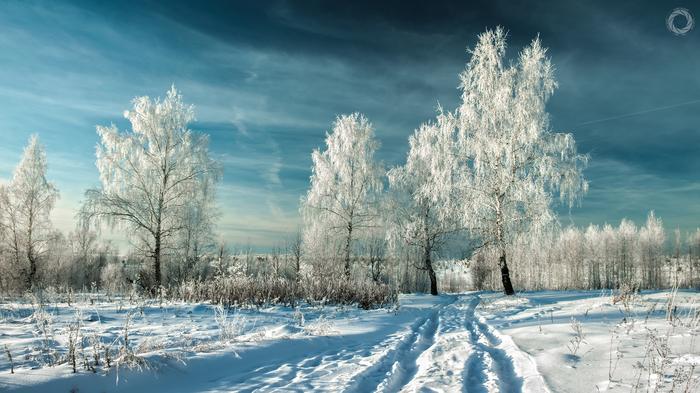 Красота зимнего леса Зимний лес, Фотография, Пейзаж, Ab87