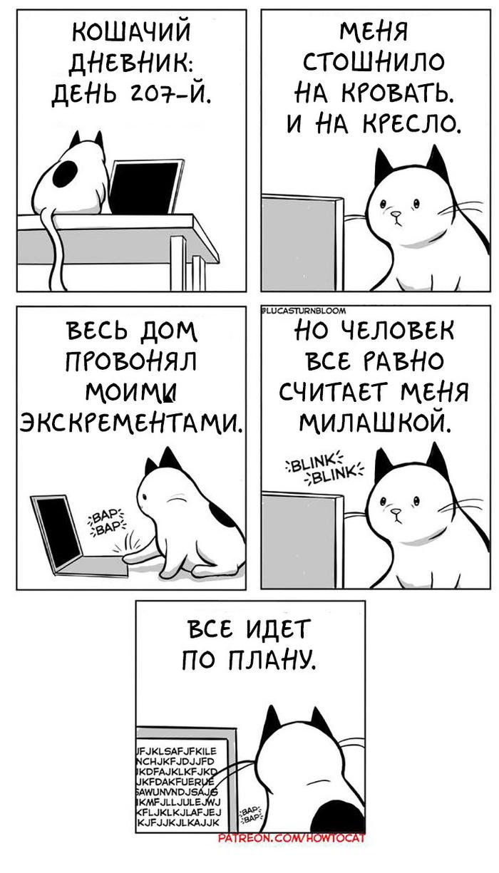Котошаблоны Комиксы, Кот, Стереотипы, HowToCat, Длиннопост, Lucas Turnbloom