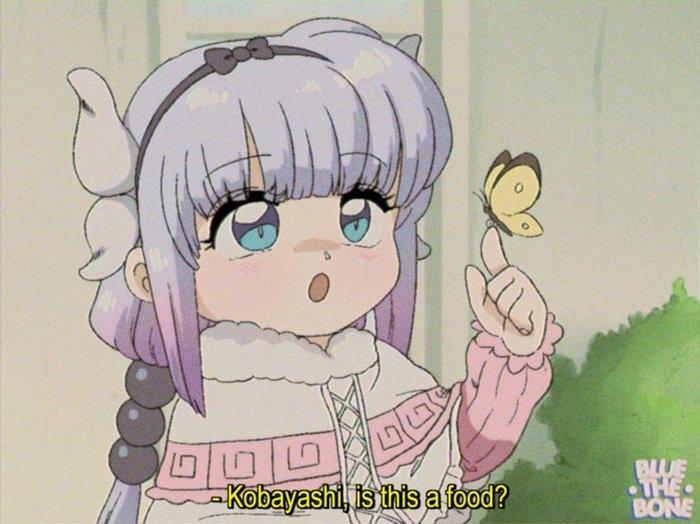 Кобаяши, это еда?