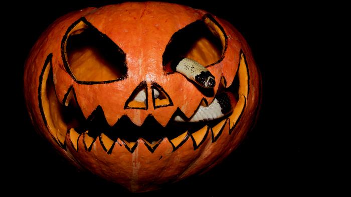 Хеллоуинское Фотография, Хэллоуин, Змея, Улитка, Длиннопост