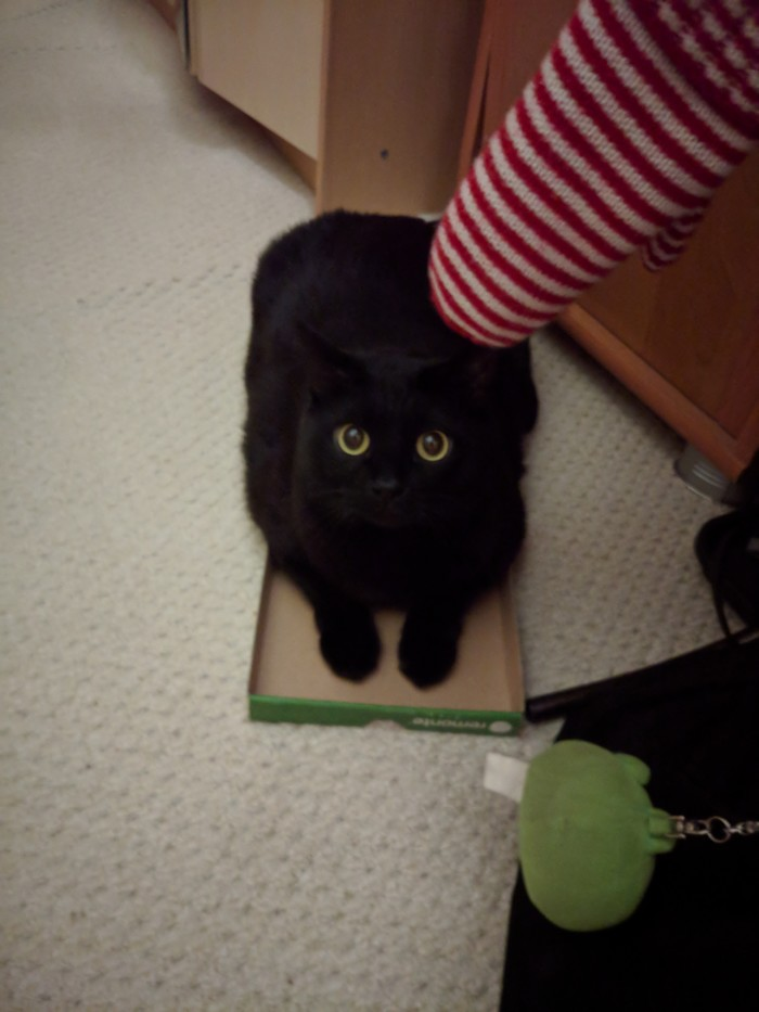 Размер (коробки) не имеет значения