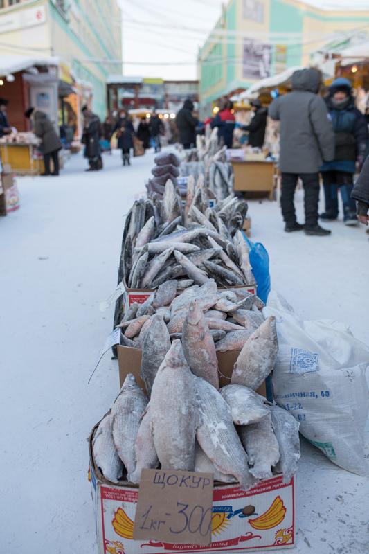 Рыбный рынок в Якутии Якутия, Рыбный рынок, Крестьянский, Якутск, Зима, Очень скоро Новый год, Длиннопост, Видео