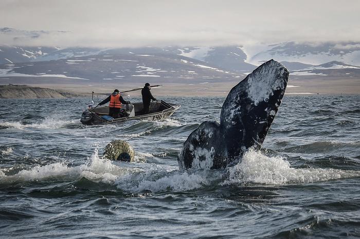 Лучшие фотографии Дальнего Востока в 2018 году Итоги, Фотография, Красивый вид, Природа, Длиннопост