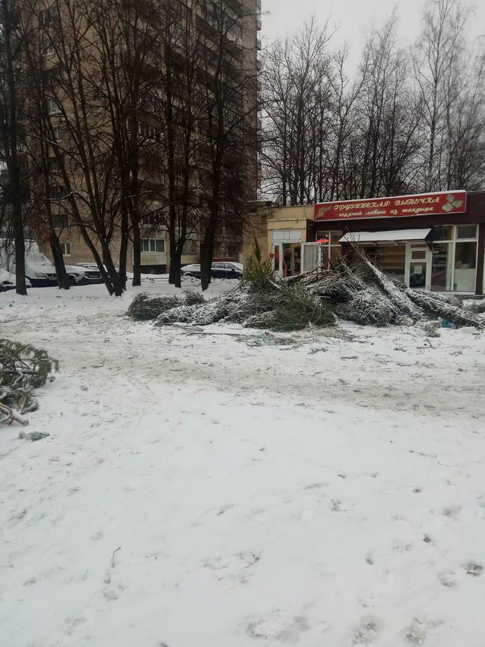 Новый год кончился Санкт-Петербург, Грусть, Новый Год, Люди свиньи, Длиннопост