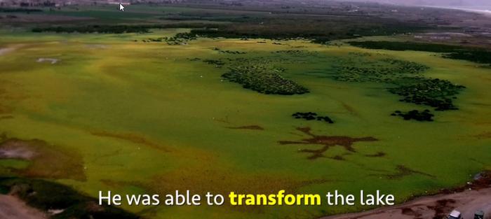 В удивительное время мы живем. Очистить озеро - лекго Озеро, Длиннопост, Очистка воды, Ученые, Нанотехнологии, Видео