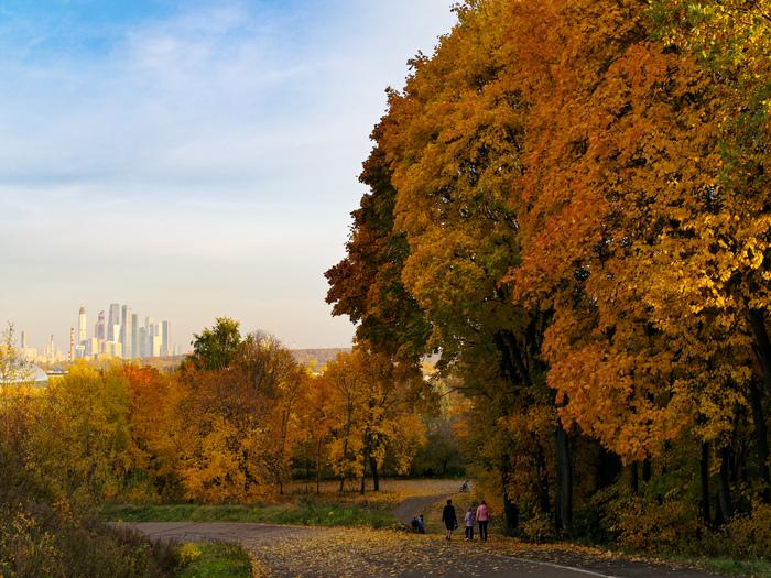 Осенние Крылатские холмы Москва, Фотография, Осень, Крылатские холмы, Длиннопост
