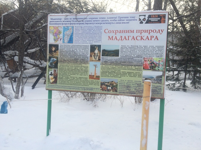 Снято в зоопарке Новосибирска