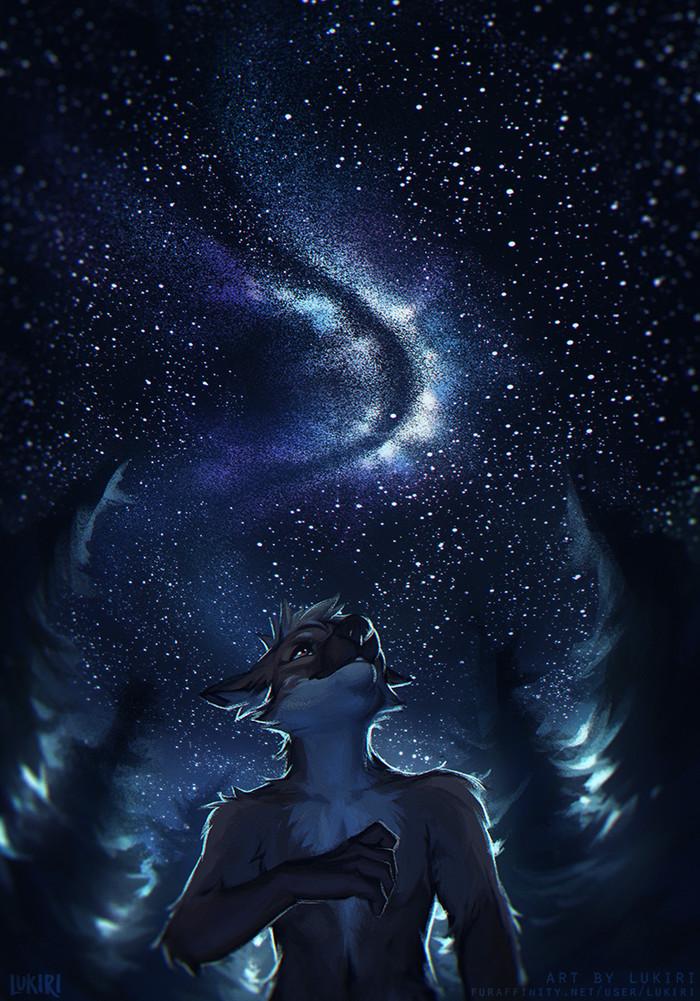 Starry Sky Фурри, Арт, Антро, Furry Canine, Звездное небо, Lukiri