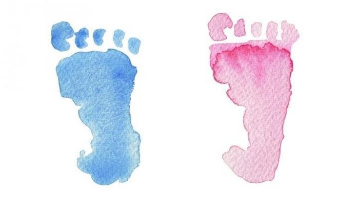 Этические проблемы выбора пола ребенка, или можно ли заказать мальчика Врт, Эмбриология, Биология, Гендерные вопросы, Пол ребёнка, Гифка, Длиннопост