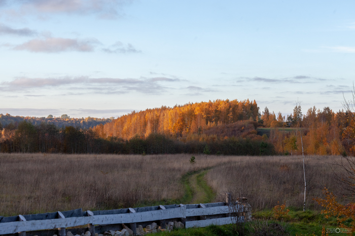 Дорога уходит в даль Фотография, Пейзаж, Изборск, Псков, Дорога, Российские дороги, Длиннопост