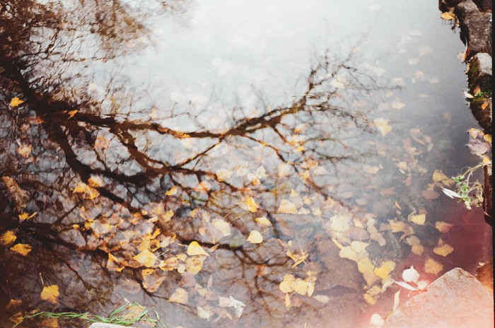 Кадры со старенькой мыльницы. Фотография, Херсон, Фотопленка, Двойная экспозиция, Мыльница, Ламповость, Длиннопост