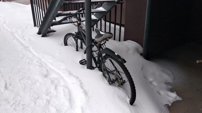 Подснежник Зима, Велосипед, Казань