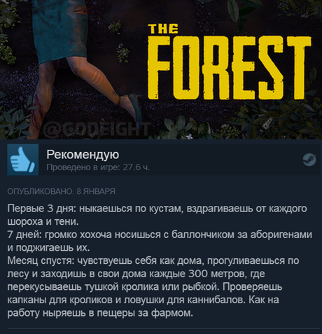 Эволюция жизни в лесу