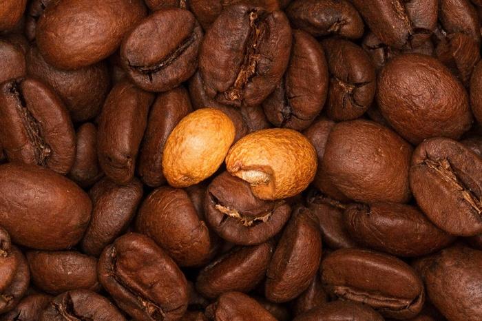 Квакер Кофе, Кофейня, Бариста, Обжарка, Кофеин, Длиннопост