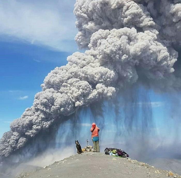 Один день из жизни вулканологов Хаски, Парамушир, Активный отдых, Вулкан, Эбеко, Собаки и люди, Длиннопост, Собака